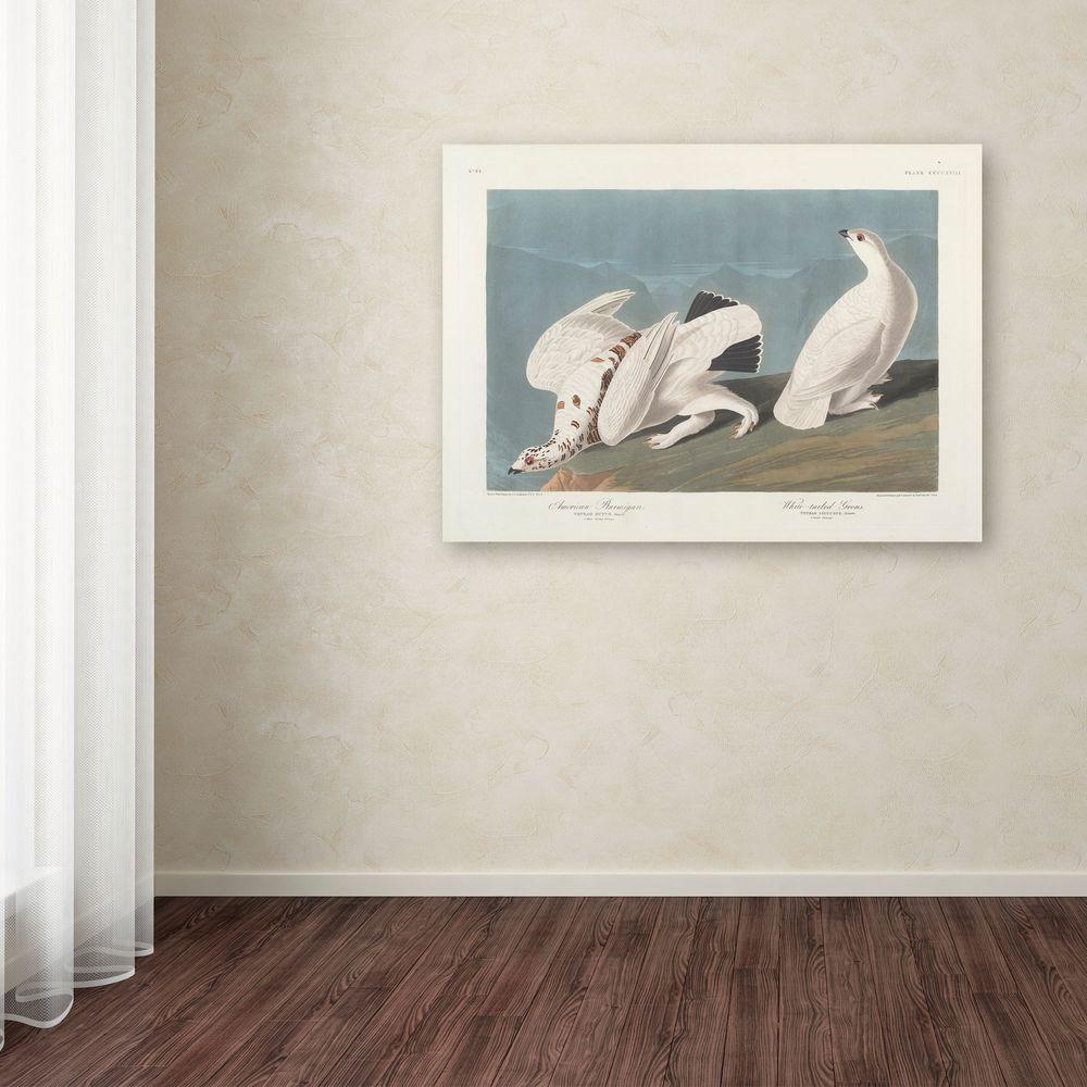 14 in. x 19 in. American Ptarmigan Canvas Art