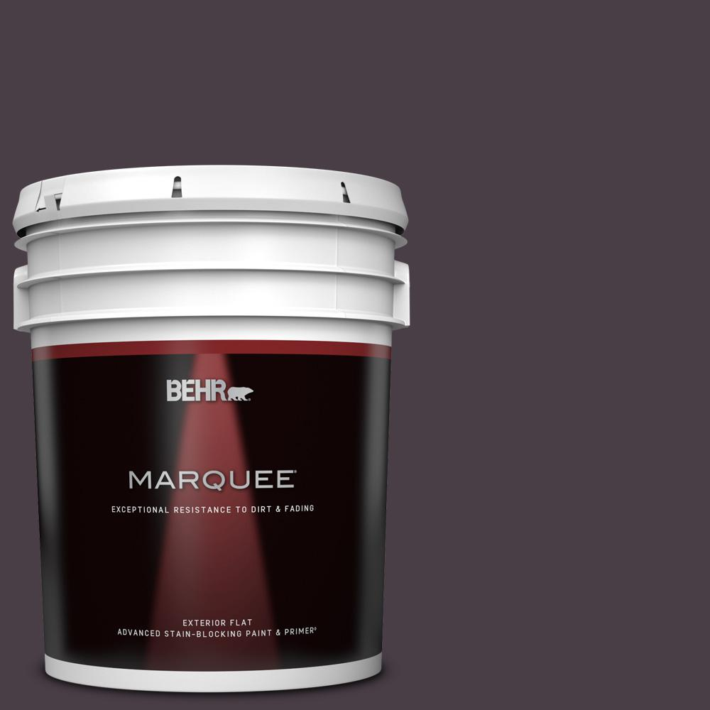 Behr Marquee 5 Gal Ppu17 20 Eclectic Purple Flat Exterior Paint And Primer In One 445305 The Home Depot