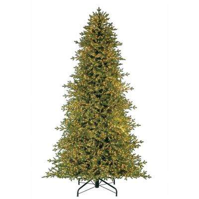 Pre-Lit LED Majestic Brilliance Fir Artificial Christmas Tree with 7000 Warm