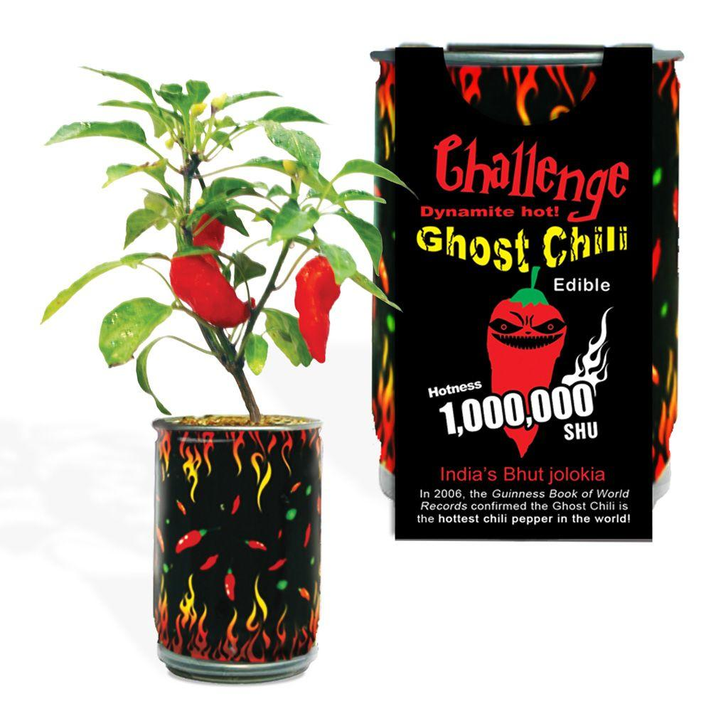 null Ghost Chili