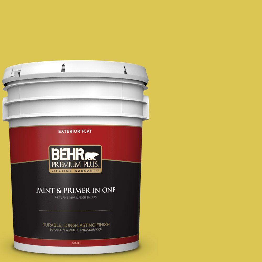 5 gal. #HDC-SM16-10 Pepperoncini Flat Exterior Paint