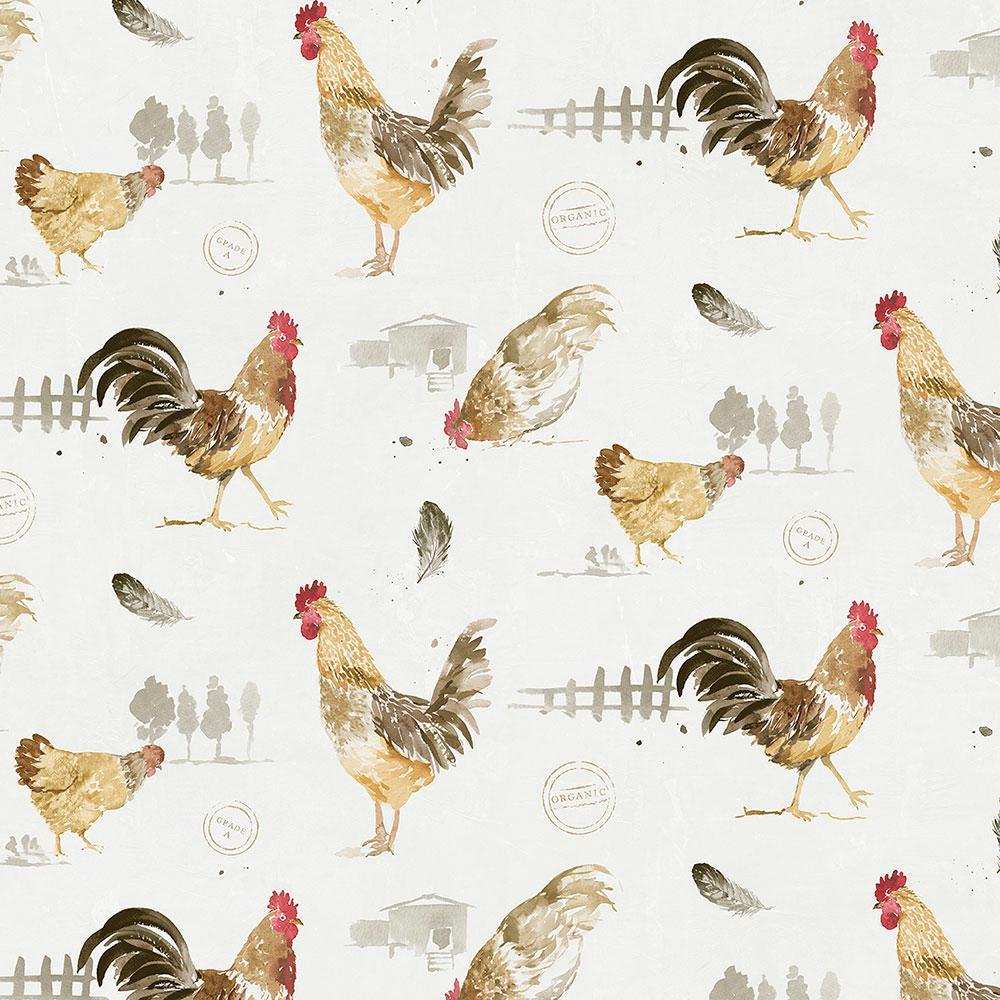 Fresh Chicken Wallpaper