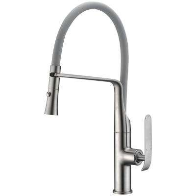 Accent Single-Handle Pull-Down Sprayer Kitchen Faucet in Brushed Nickel