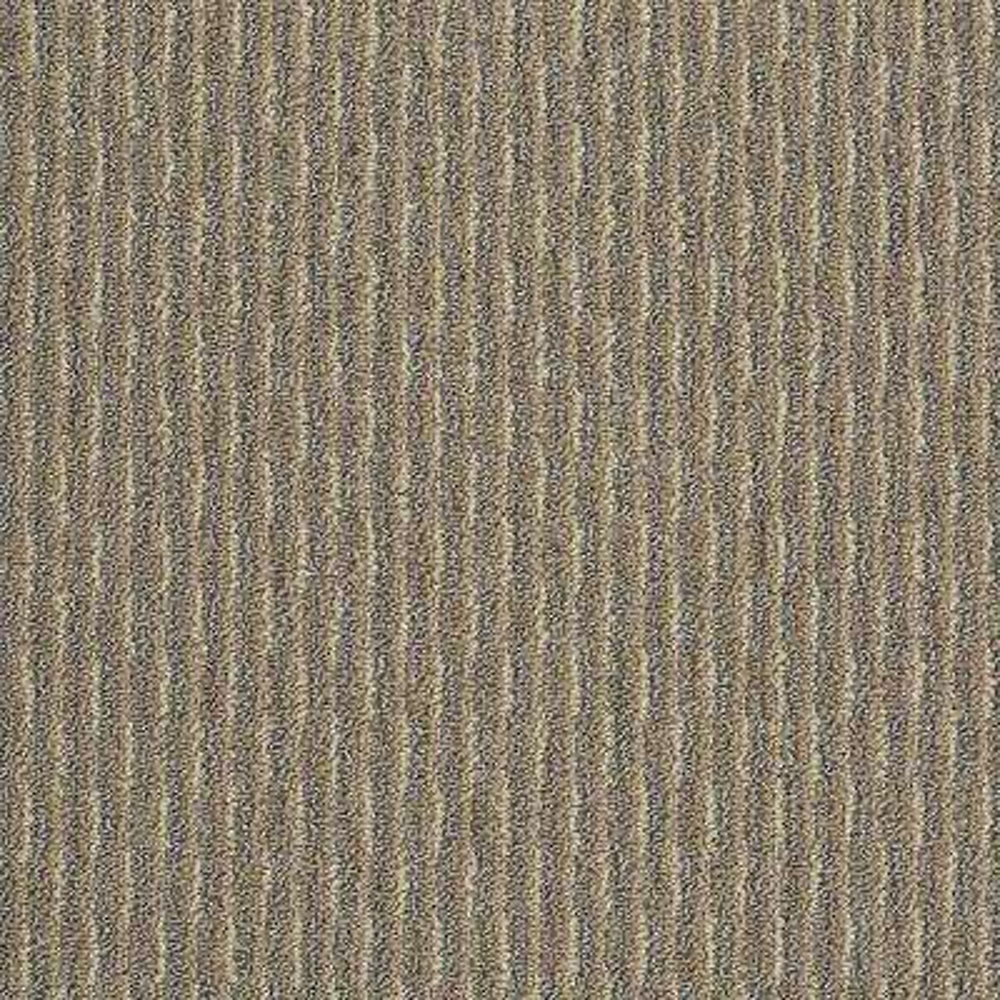 Carpet Sample - Morro Bay - In Color Desert Beige 8 in. x 8 in.