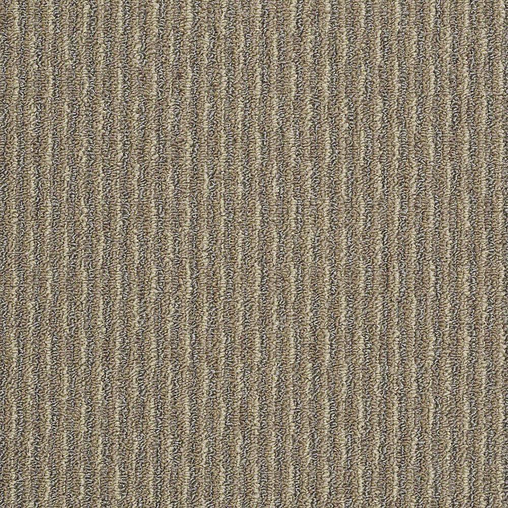 Trafficmaster Commercial Carpet Sample Morro Bay In