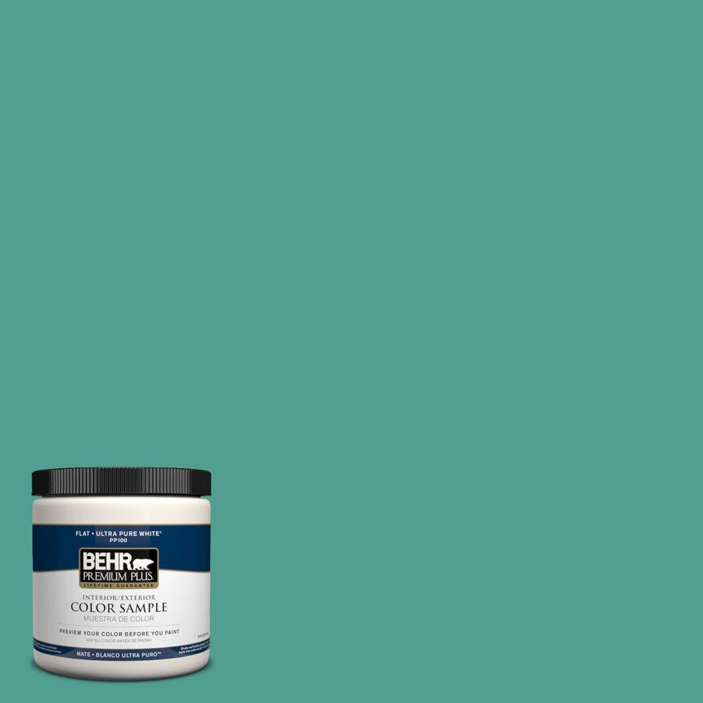 8 oz. #HDC-WR15-9 Aqua Revival Zero VOC Interior/Exterior Paint Sample
