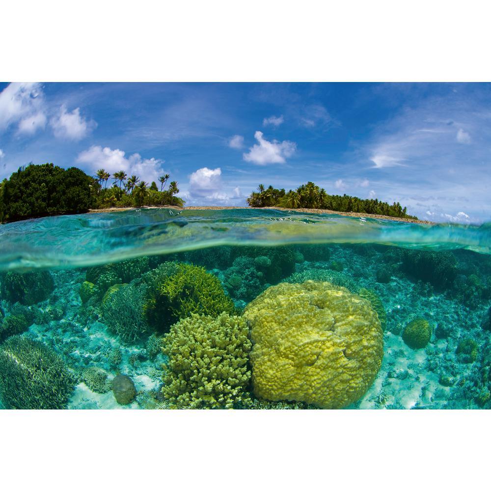 Tropical Coral Reef Beach and Nautical Wall Mural