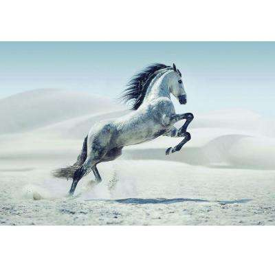 "47.2 in. H x 63 in. W ""White Stallion I"" Artwork in Tempered Glass Wall Art"