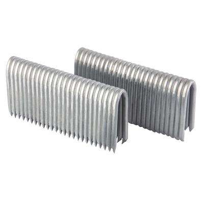2 in. 9-Gauge Galvanized Steel Fencing Staples (1000-Pack)