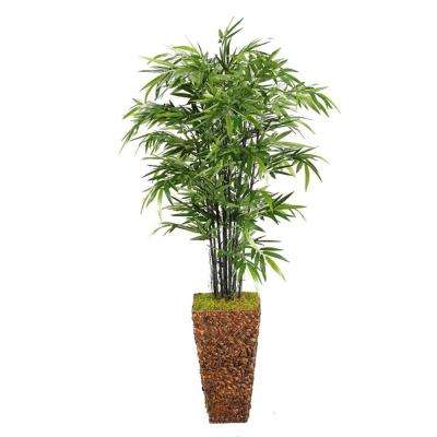 6.5 ft. Indoor Bamboo Tree in Square Banana Leaf Basket