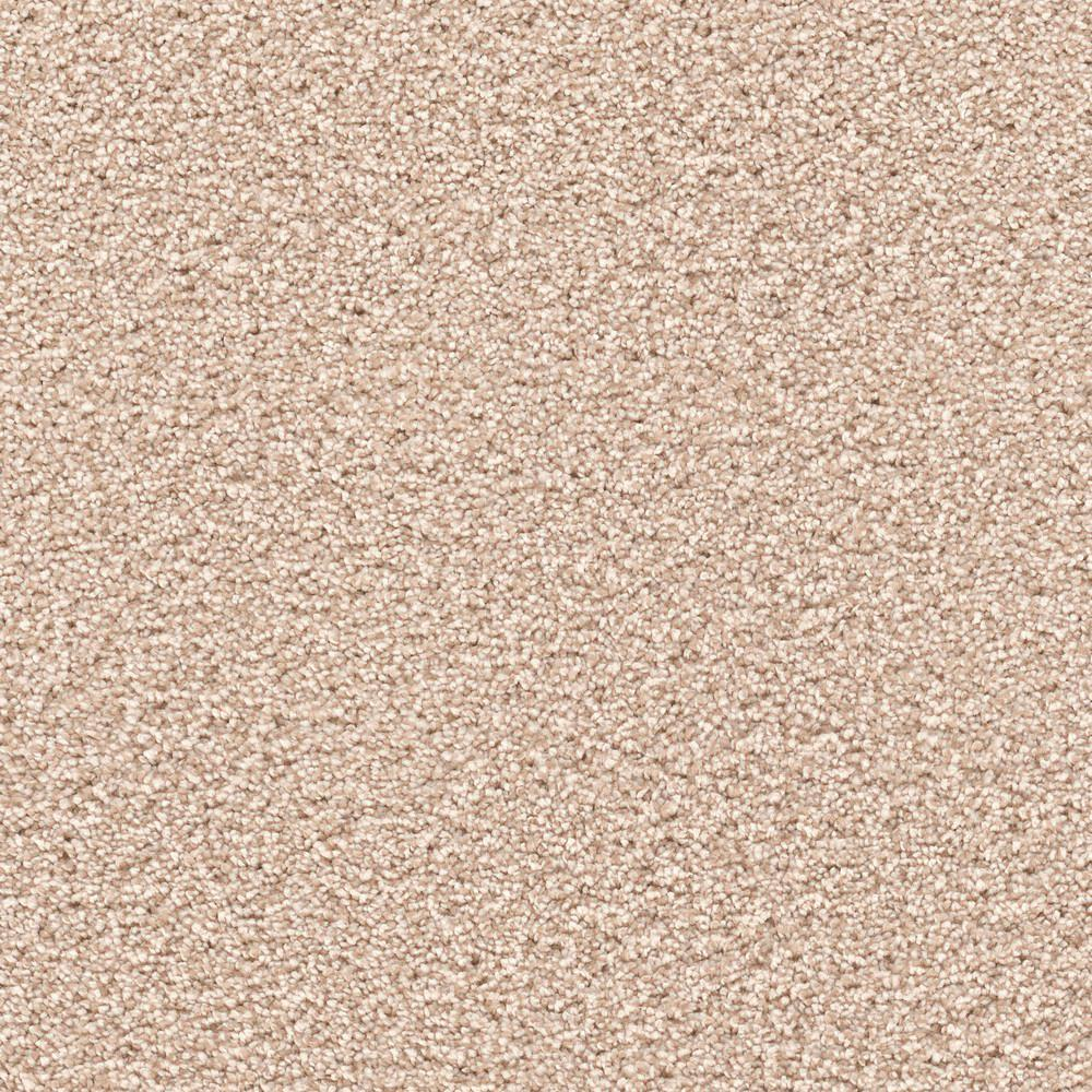 Home Decorators Collection Carpet Sample Expeditious Ii Color Advantage Texture 8 In X 8 In
