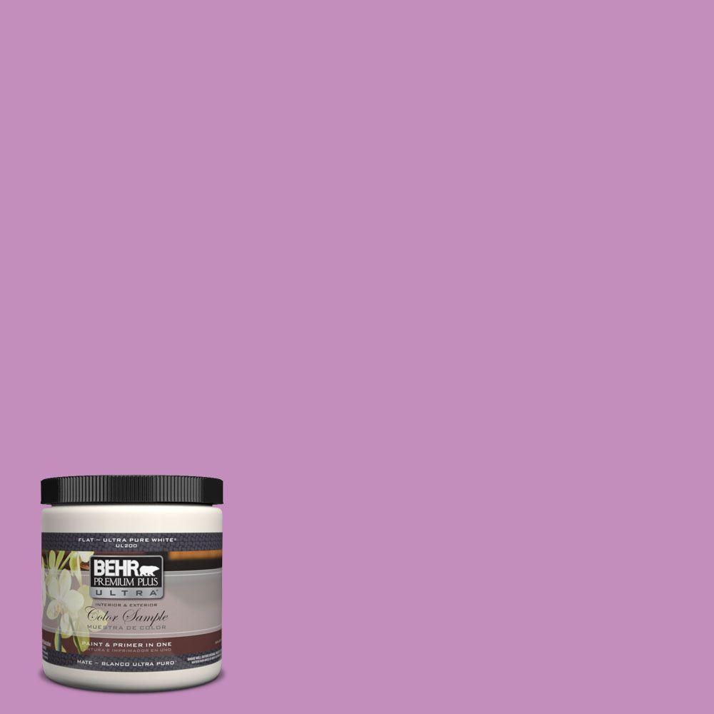 BEHR Premium Plus Ultra 8 oz. #670B-5 Pretty Petunia Interior/Exterior Paint Sample