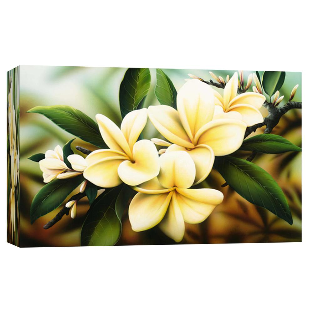 PTM Images 10.in x 12.in \'\'Delicate flower\'\' Printed Canvas Wall Art ...