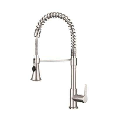 Bern Semi-Pro 23.75  in. Tall Single-Handle Pull-Down Sprayer Kitchen Faucet with 360° Reach Stainless Steel