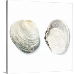 """Watercolor Shells II"" by Megan Meagher Canvas Wall Art"