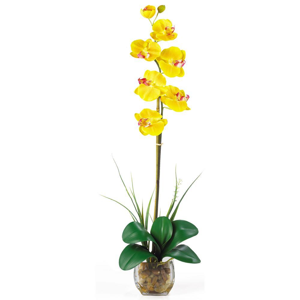 27 in. Single Phalaenopsis Liquid Illusion Silk Flower Arrangement in Yellow