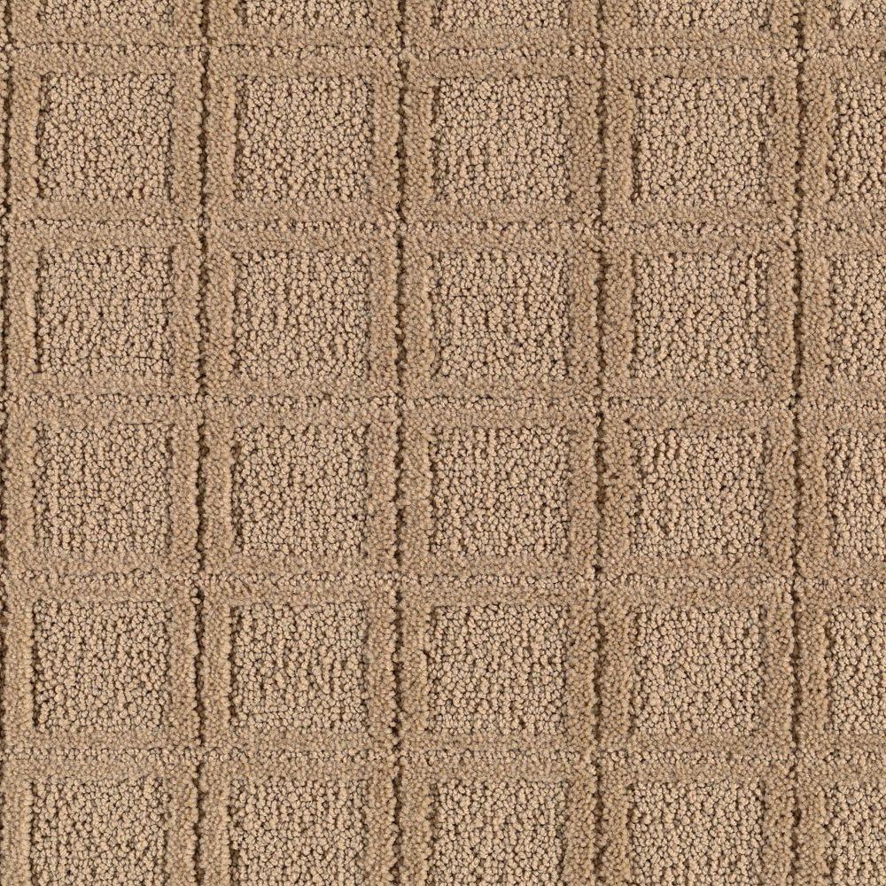 Platinum Plus Wondrous - Color Harmony 12 ft. Carpet