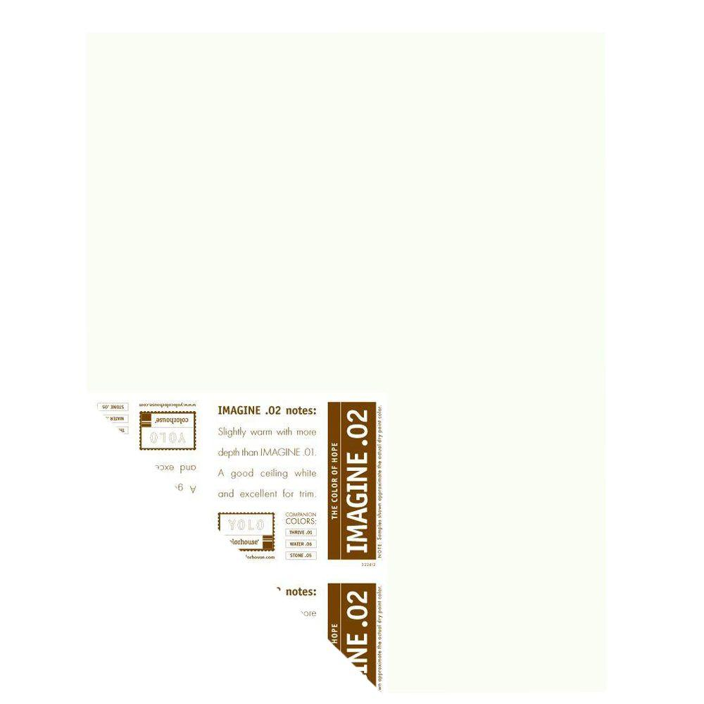 YOLO Colorhouse 12 in. x 16 in. Imagine .02 Pre-Painted Big Chip Sample