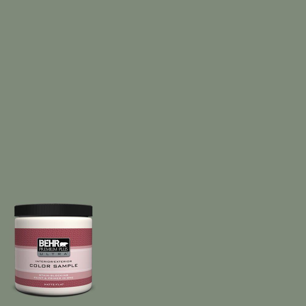 BEHR Premium Plus Ultra 8 oz. #N400-5 Thai Basil Interior/Exterior Paint Sample