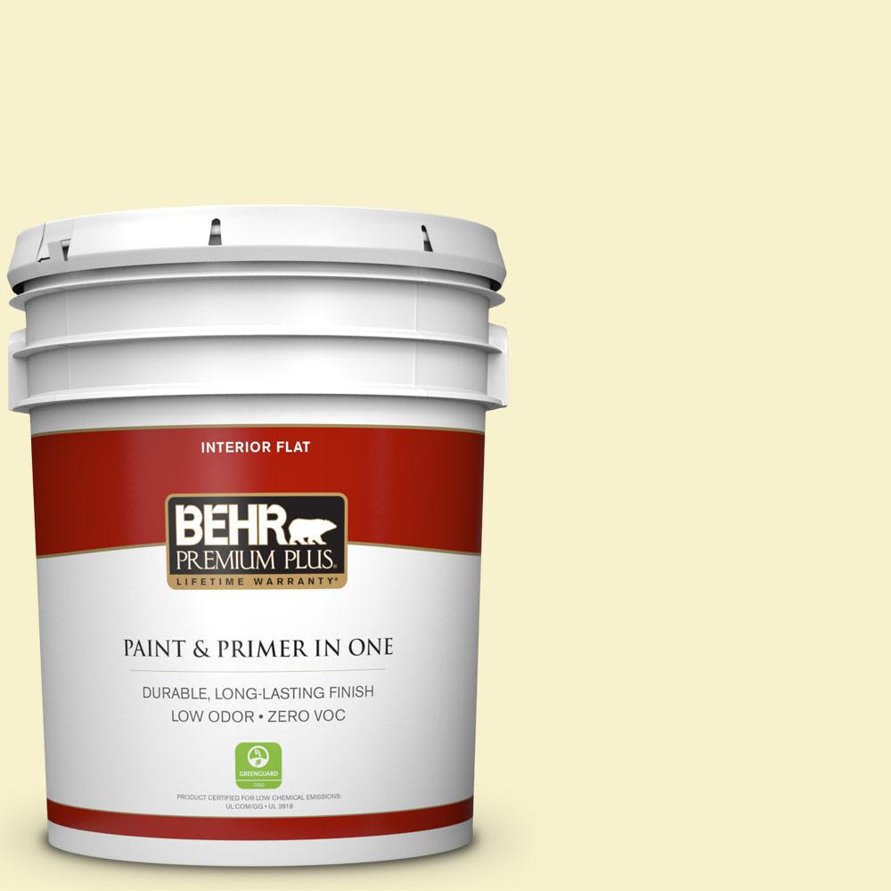 5 gal. #390A-3 Twinkle Flat Zero VOC Interior Paint and Primer