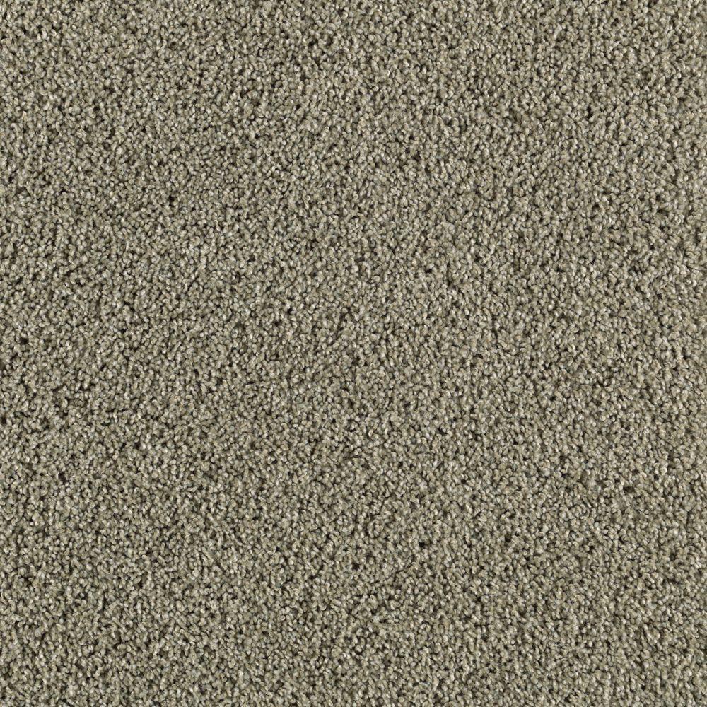 Platinum Plus Transcending - Color Green Pastures 12 ft. Carpet