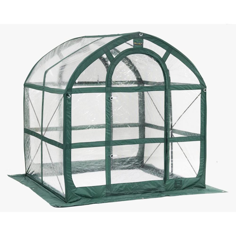 FlowerHouse SpringHouse 6 ft. x 6 ft. PVC Pop-Up Greenhouse by FlowerHouse