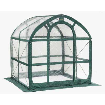 SpringHouse 6 ft. x 6 ft. PVC Pop-Up Greenhouse