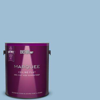 1 gal. #PPU14-11 Tinted to Gentle Sky Flat Interior Ceiling Paint and Primer in One