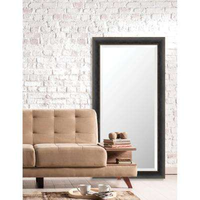 Acadia 25 in. x 49 in. Transitional Framed Bevel Mirror