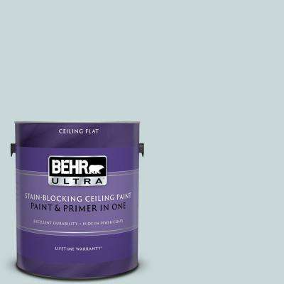 1 gal. #PPU13-16 Offshore Mist Ceiling Flat Interior Paint and Primer in One