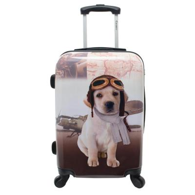 Oldies 20 in. Hardside Carry-On Luggage