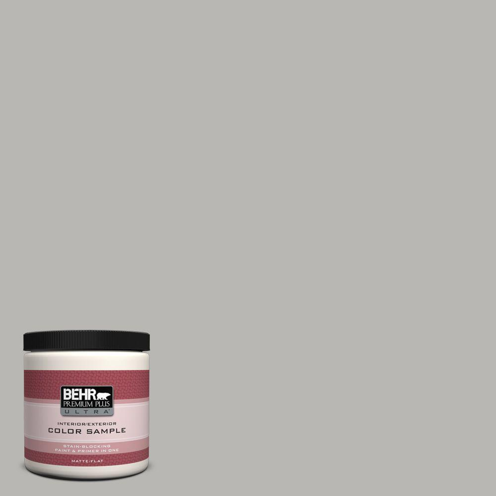 BEHR Premium Plus Ultra 8 oz. Home Decorators Collection Sonic Silver Interior/Exterior Paint Sample