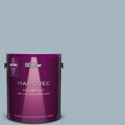 1 gal. #N480-3 Tinted to Shadow Blue One-Coat Hide Flat Interior Ceiling Paint and Primer in One