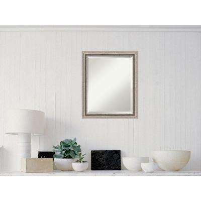 Bel Volto Silver Wood 19 in. W x 23 in. H Contemporary Framed Mirror