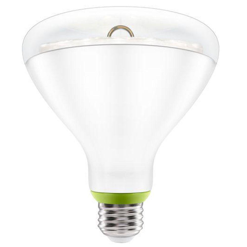 Link 90W Equivalent Bright White (3000K) PAR38 Connected Home Flood LED Light Bulb
