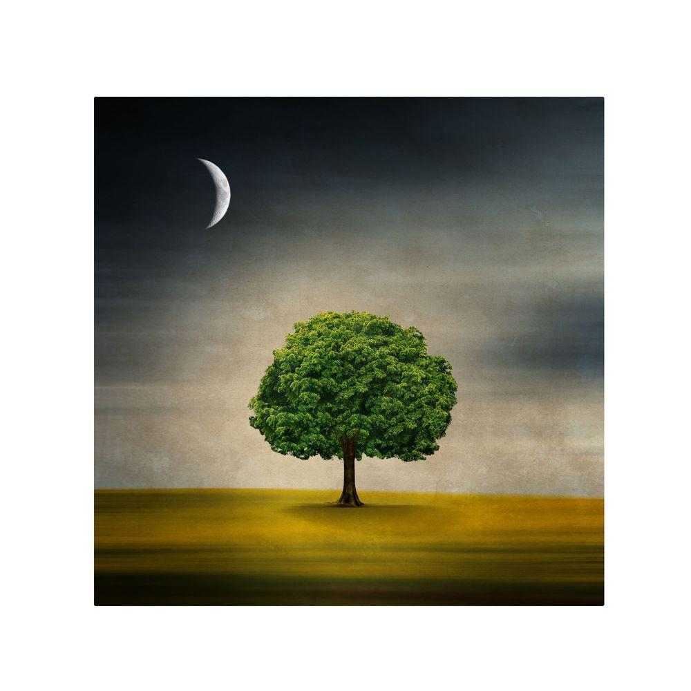 Trademark Fine Art 18 in. x 18 in. Under the Moon Canvas Art