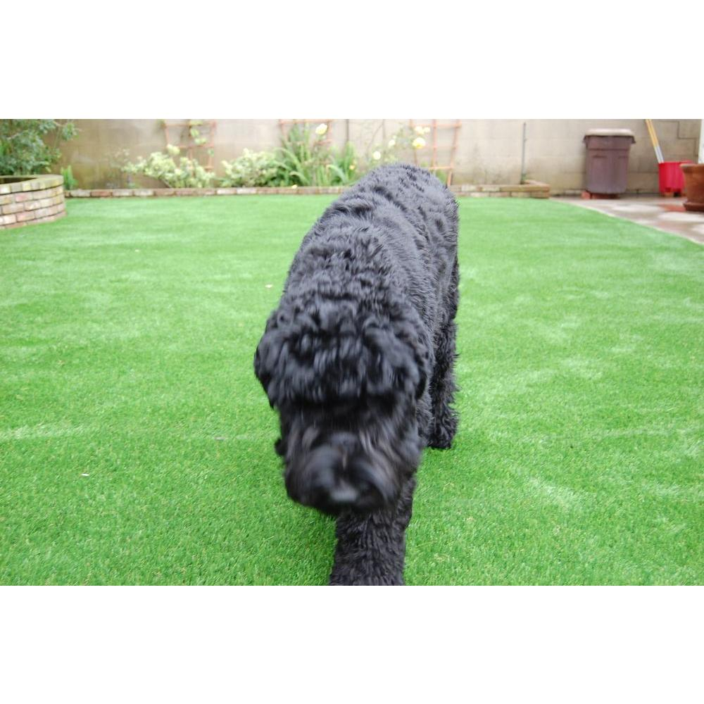 Artificial Gr Synthetic Lawn Turf