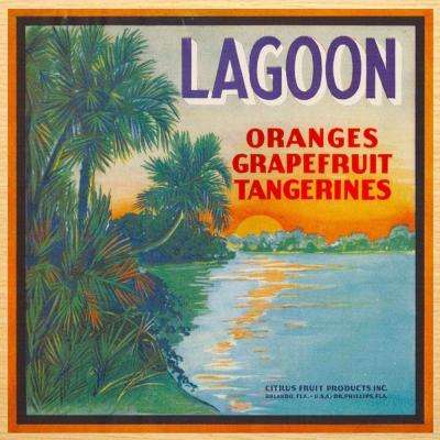 Beautiful 19 in x 19 in. Wall Art with Lagoon Fruit Crate art design.