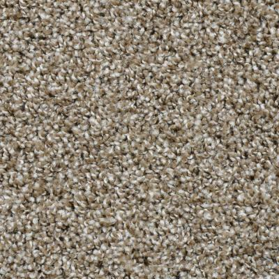 Dignified - Color Palisades Texture 12 ft. Carpet