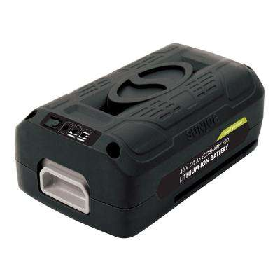 iON EcoSharp PRO 40-Volt 5.0 Ah Lithium-Ion Battery