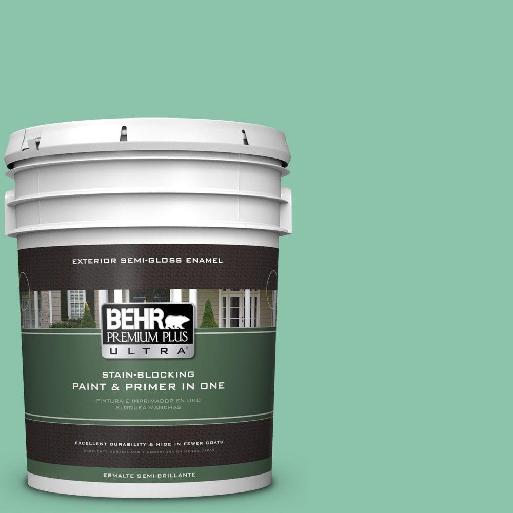 BEHR Premium Plus Ultra Home Decorators Collection 5-gal. #hdc-WR14-8 Spearmint Frosting Semi-Gloss Enamel Exterior Paint