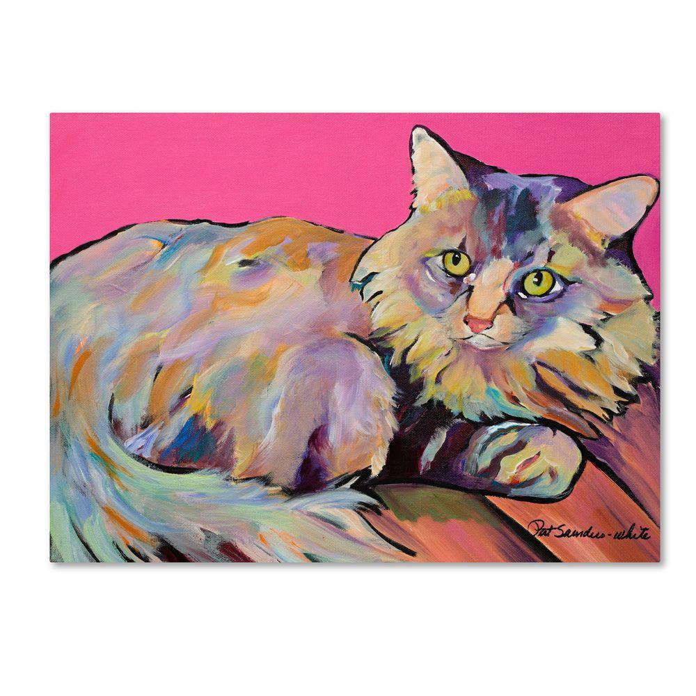 18 in. x 24 in. Catatonic Canvas Art