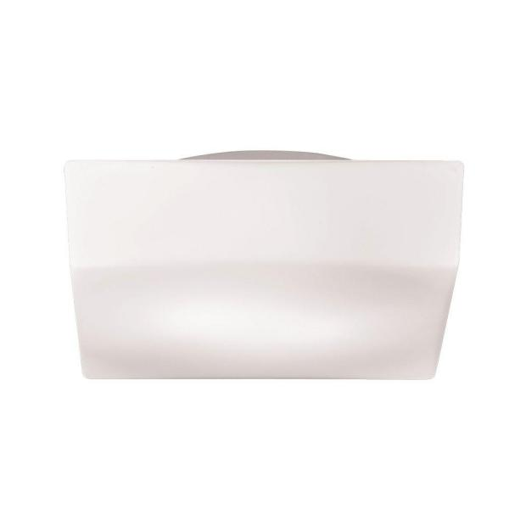 Amata Collection 1-Light Frost White Flush Mount