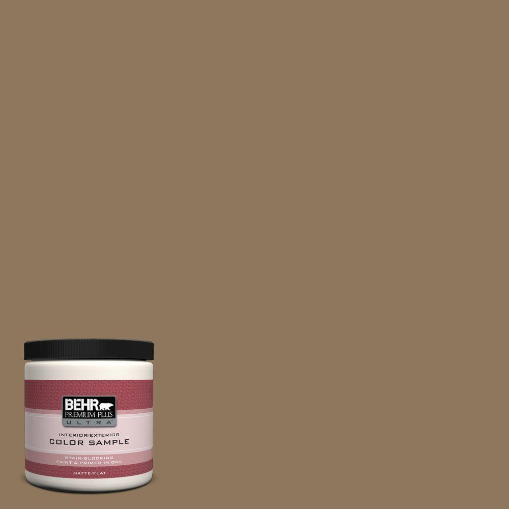 BEHR Premium Plus Ultra 8 oz. #N300-6 Archaeological Site Interior/Exterior Paint Sample