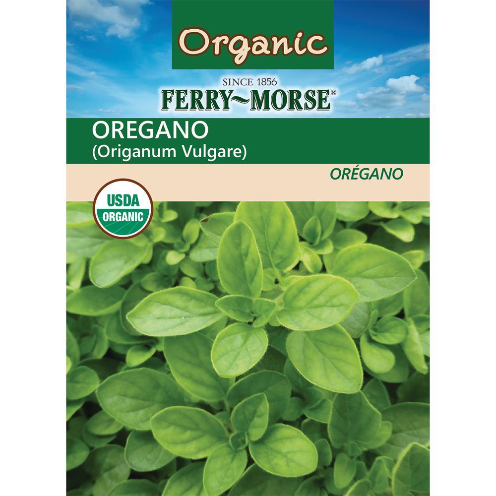 Oregano Organic Seed