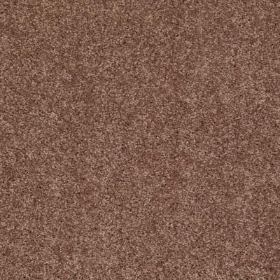 Palmdale I - Color Coffee 15 ft. Carpet