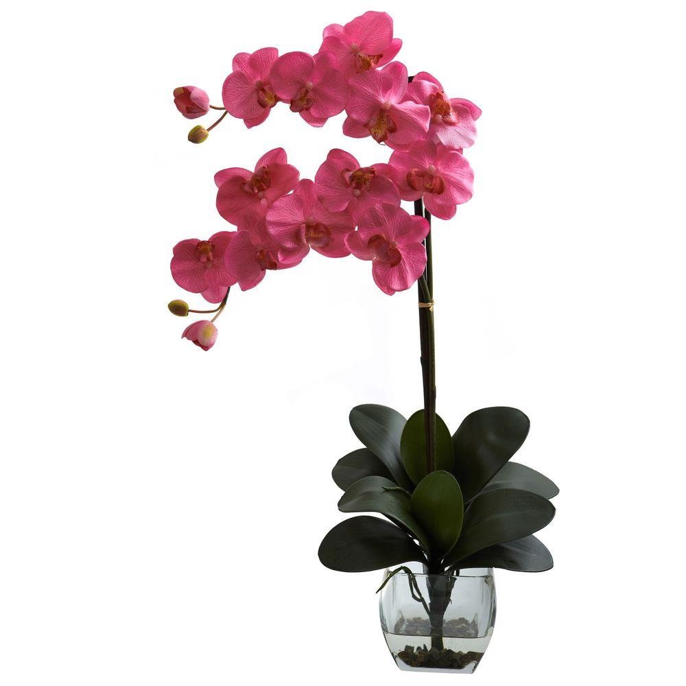 Nearly Natural Double Phalaenopsis Orchid with Vase Arrangement in Dark Pink