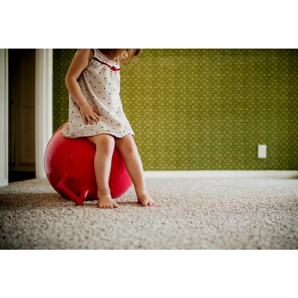 Scotchgard 17 Oz Carpet And Rug Protector