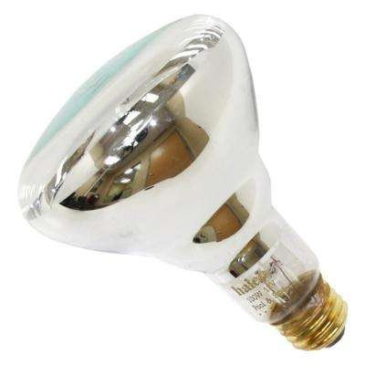 Halco 100-Watt BR30 Flood Specialty Pool Spa Replacement Light Bulb (1-Bulb) 104026