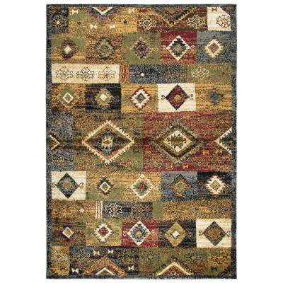 Xceed Multicolor 8 ft. x 10 ft. Rectangle Area Rug